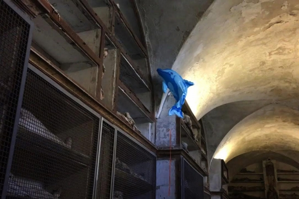 Citizens of Palermo, a video installation presented at Palazzo Ducale