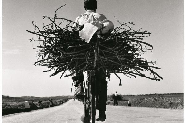 Fulvio Roiter. Fotografie 1948 - 2007