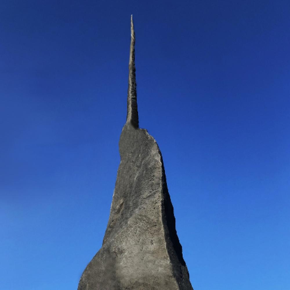 BIZHAN BASSIRI. Meteorite Narvalo