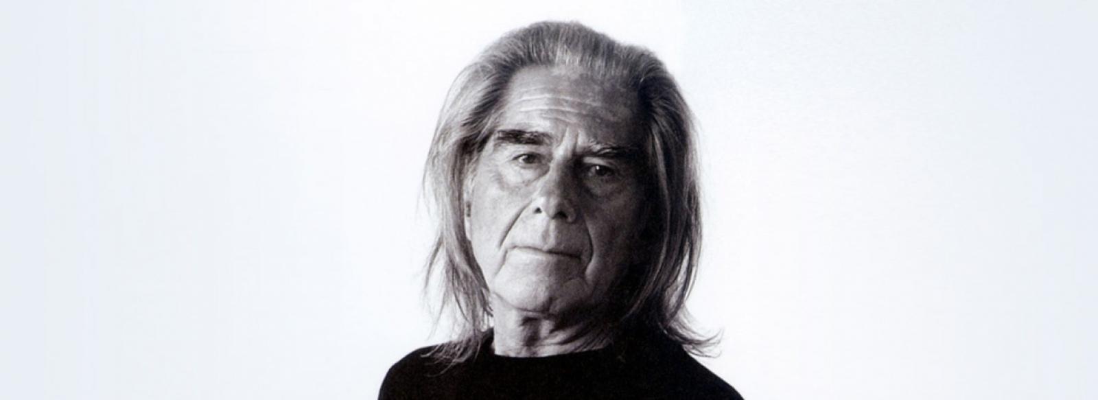 Fabrizio Plessi: l'età dell'oro